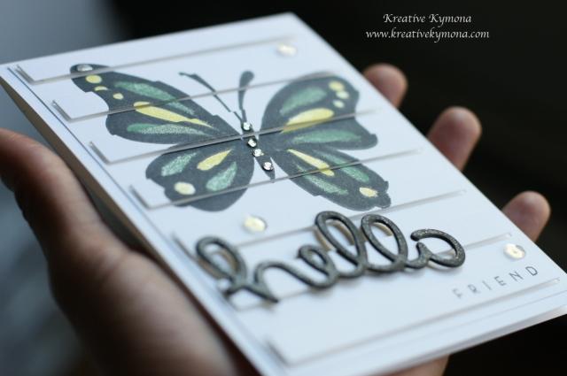 Jamaican Butterfly closeup