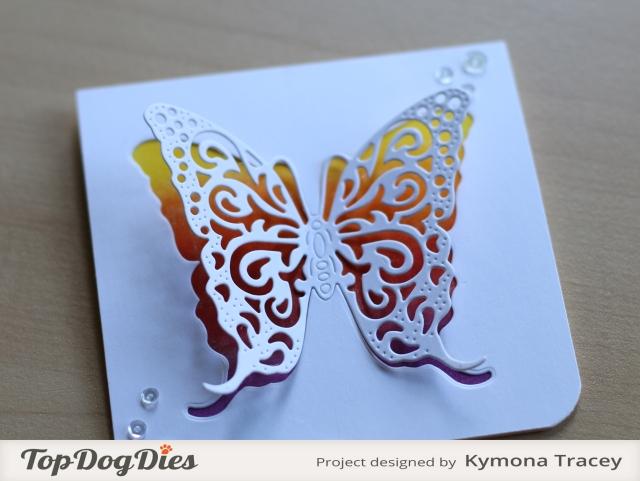 Butterfly 2 (TDD)