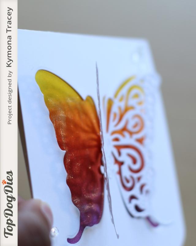 Butterfly 3 (TDD)