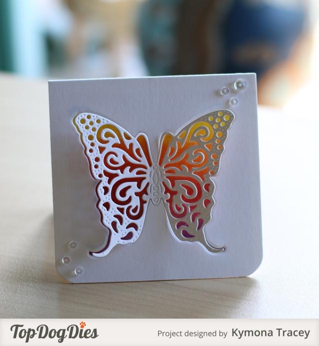 Butterfly 4 (TDD)