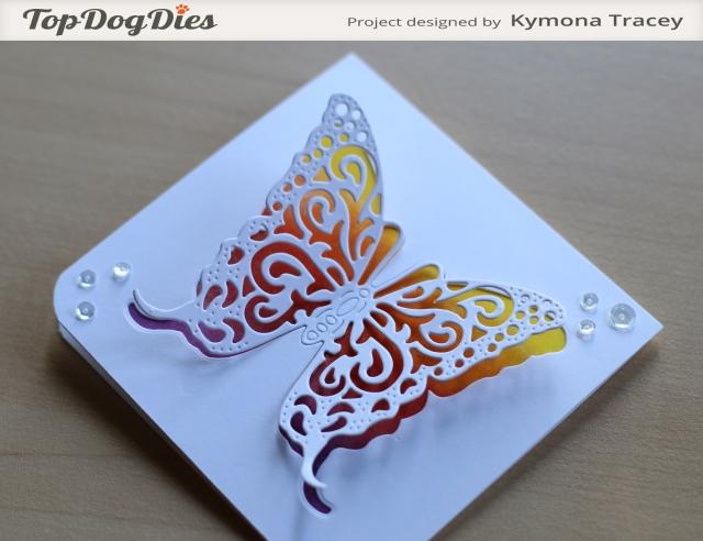 Butterfly (TDD)