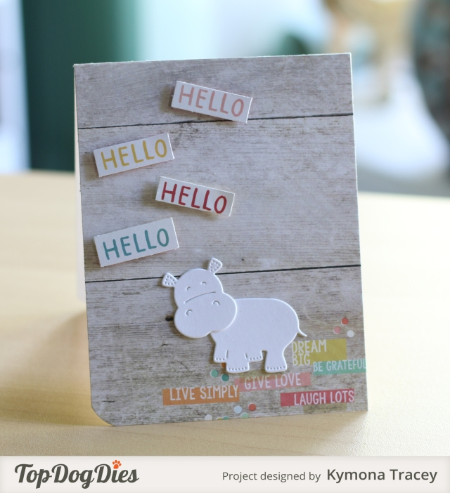 Hello Hello Hippo (TDD)