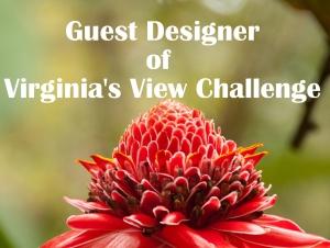 guest-designer-badge